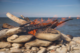 fire - 211367222