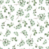 Seamless pattern with eucalyptus branches - 211368825