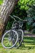 bicyclette dans un parc