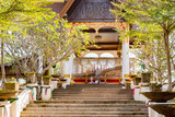 Manikhoth sacred tree at museum located at Khone Pha Pheng waterfall area. - 211400008