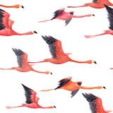Watercolor flamingo pattern - 211401698
