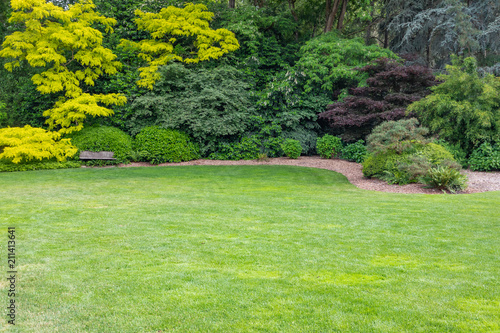 Beautiful Green Garden Setting With Wood Bench