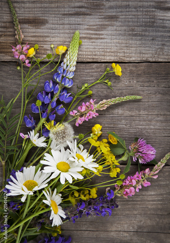 Wild flowers on old grunge wooden background (chamomile lupine dandelions thyme mint bells rape) - 211414226