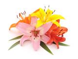Bouquet of beauty lilies.