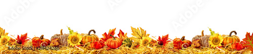 Leinwanddruck Bild Autumn leaves