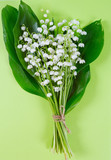 lilly of the valley isolated on white