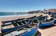Paysage de Tifnit pres de Agadir - Maroc