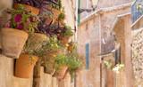 Streets of Mallorca