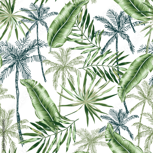 Green banana, palm trees, leaves with white background. Vector seamless pattern. Tropical jungle foliage illustration. Exotic plants greenery. Summer beach floral design. Paradise nature graphic © ojardin
