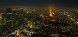 Tokyo skyline - 211505015