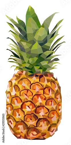 Ananas - 211513863
