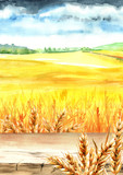 Wheat field with blank board. Summer rural landscape. Watercolor hand drawn vertical illustration, background for your design - 211531848