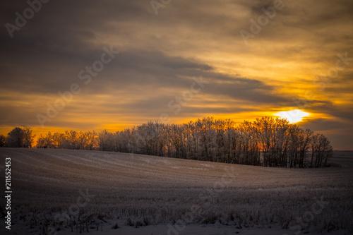 Aluminium Grijze traf. Sunrise On The Field