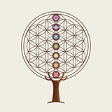 Flower of life concept tree with yoga chakras - 211576606