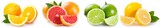 Fresh orange, grapefruit, lime and lemon - 211606056