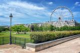 Tuileries garden, Ferris wheel in the background, Paris, France - 211614820