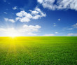 Leinwanddruck Bild - Green meadow under sun