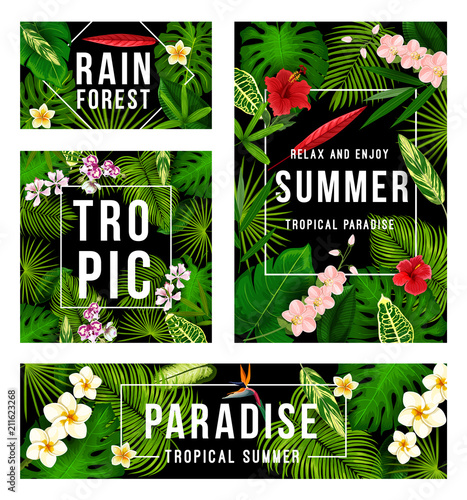 Summer tropical paradise poster with palm leaf - 211623268