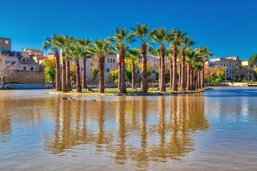 Eine Insel im See mit Dattelpalmen in der Stadt Fes in Marokko, Nordafrika, mit leuchtend blauem Himmel
