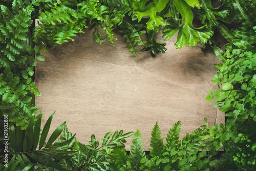 Blank board in fern leaves