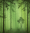 green Forest - 211634289