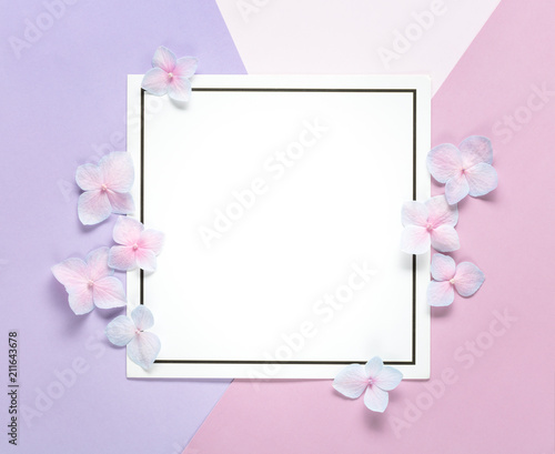 Foto Murales Blank card with flower petals on pastel background.