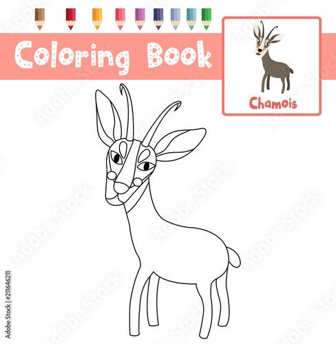Coloring page of Standing Chamois animals for preschool kids activity educational worksheet. Vector Illustration.