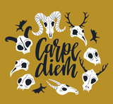 Vector card with frame of animal skulls and lettering - 'Carpe diem'. Halloween or Day of the dead background with cute skulls. - 211654868