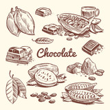 Hand drawn cacao, leaves, cocoa seeds, sweet dessert and chocolate bar. Cocoa sketch vector collection