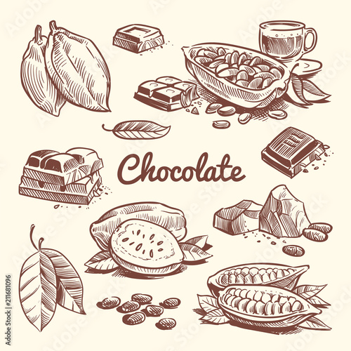 Hand drawn cacao, leaves, cocoa seeds, sweet dessert and chocolate bar. Cocoa sketch vector collection - 211681096