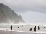 Storm waves, Neskowin, Tillamook County, Oregon - 211694255