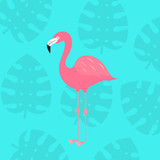 Tropical flamingo bird