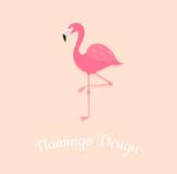 Flamingo bird on pink background
