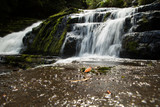 The McLean Falls on the Tautuku River in New Zealand