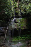 Waterfall in Jefferson National Forest in Pembroke, Giles County, Virginia in the Summer - Limestone Rock with Moss