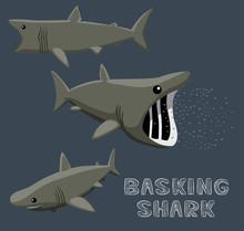 Basking Shark Cartoon  Illustration Sticker