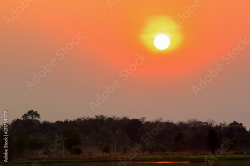 Aluminium Oranje eclat Sunset and silhouettes of tree branches.