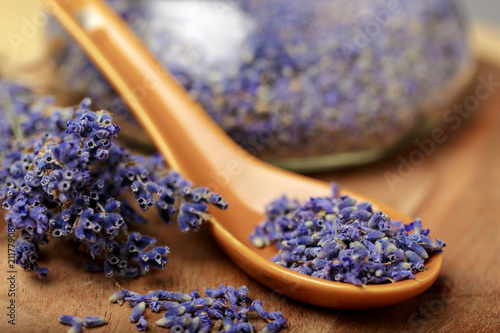 Bunch of dried lavender tied with rope close up - 211779087