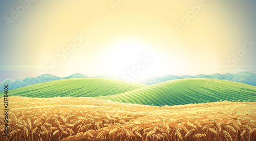Summer landscape with a field of ripe wheat, and hills and dales in the background. Raster illustration.