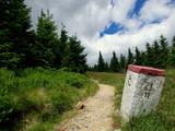 Fototapeta Rocks - Szlak górski, ścieżka wzdłuż granicy Polsko-Czeskiej © Konrad_elx