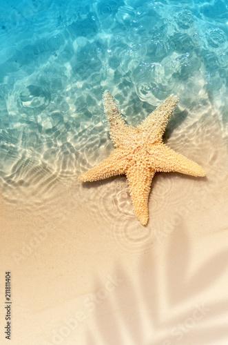 Leinwanddruck Bild starfish on the summer beach in sea water.