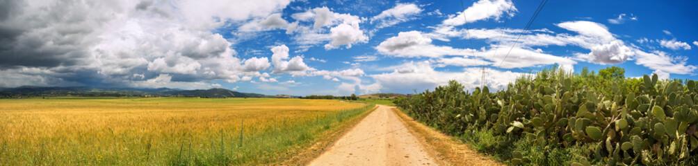 Strada di campagna nella Sardegna del sud, Italy