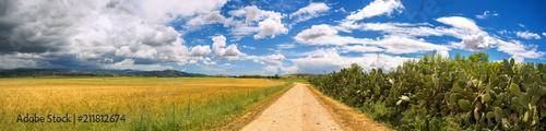 Strada di campagna nella Sardegna del sud, Italy - 211812674