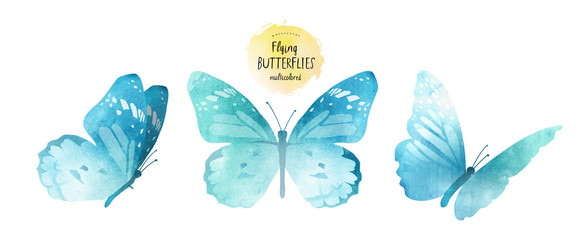 watercolor illustrations of cute blue butterflies, drawings by hand, isolated on white background © ArdeaA