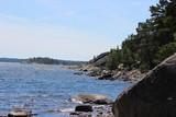Fototapeta Nature - July in Sweden © Kasia