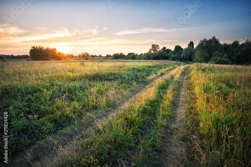 Fototapeta Country road in field with dense grass at sunset