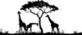 Giraffen mit Baum