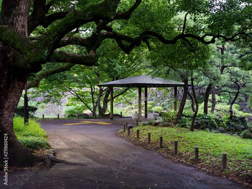 Fotobehang Lavendel 日比谷公園