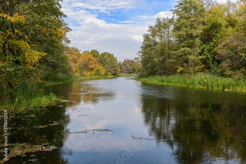 Plexiglas Herfst The picturesque autumn forest on the river Bank, in autumn all nature is transformed into new colors