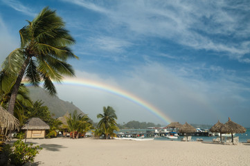 Rainbow over a beach resort in Moorea, French Polynesia. Palm tree in the foreground and blue sky above.